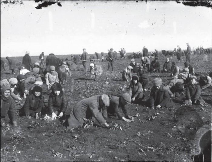 Жизнь в СССР в 20-30-х годах прошлого века