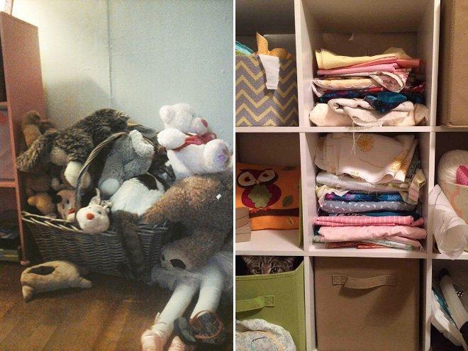 Найди кота на фотографии или настоящие мастера маскировки