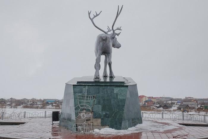 Жизнь на полярном круге