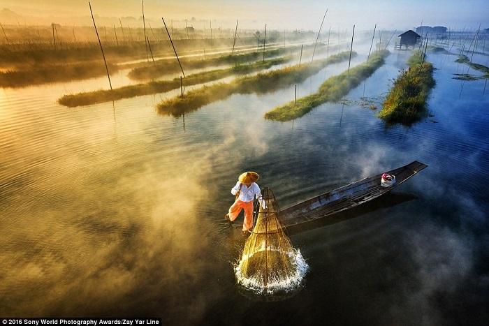 20 удивительных работ с фотоконкурса Sony World Photography Awards 2016