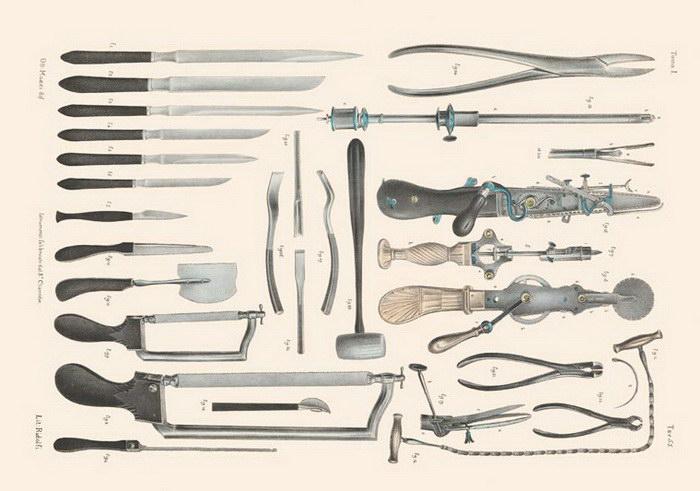 Анатомия XIX века в книге Ричарда Барнетта