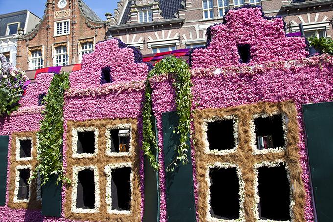 Чем заняться в Амстердаме