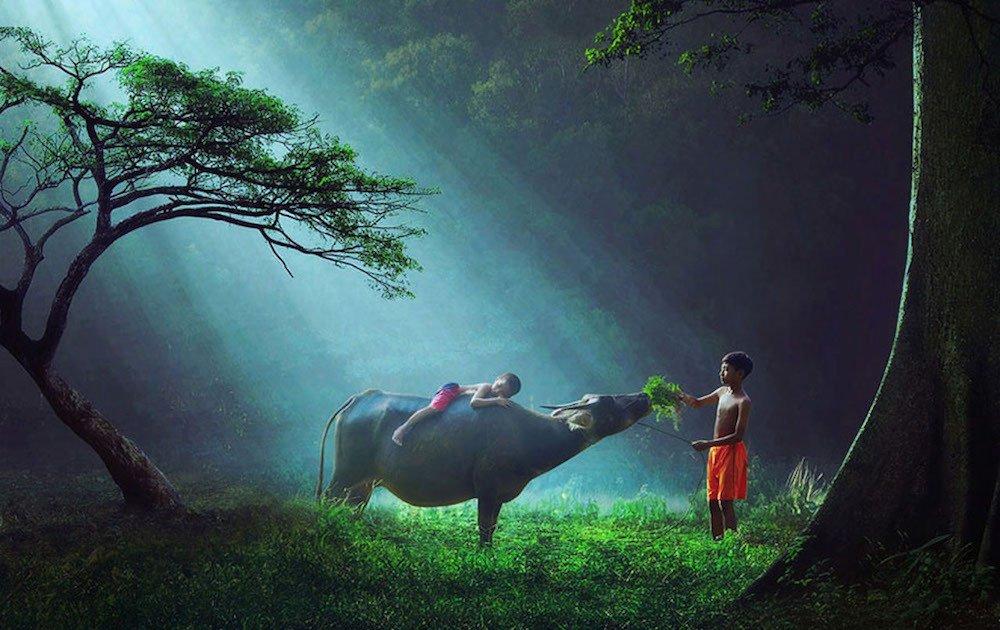 25 удивительных фотографий, в реальность которых сложно поверить