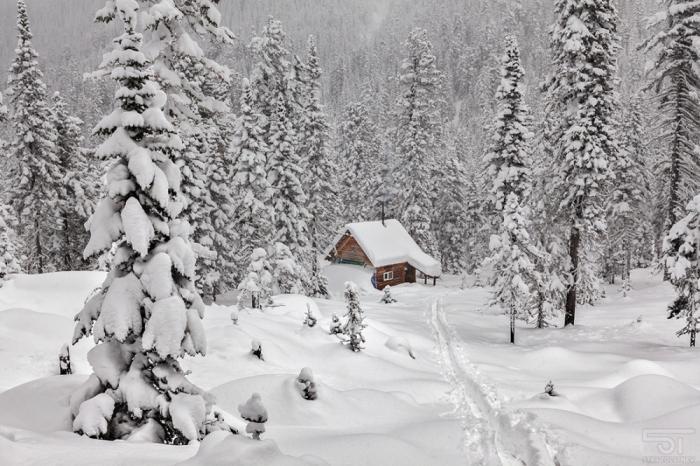 Зимнее настроение на фотографиях