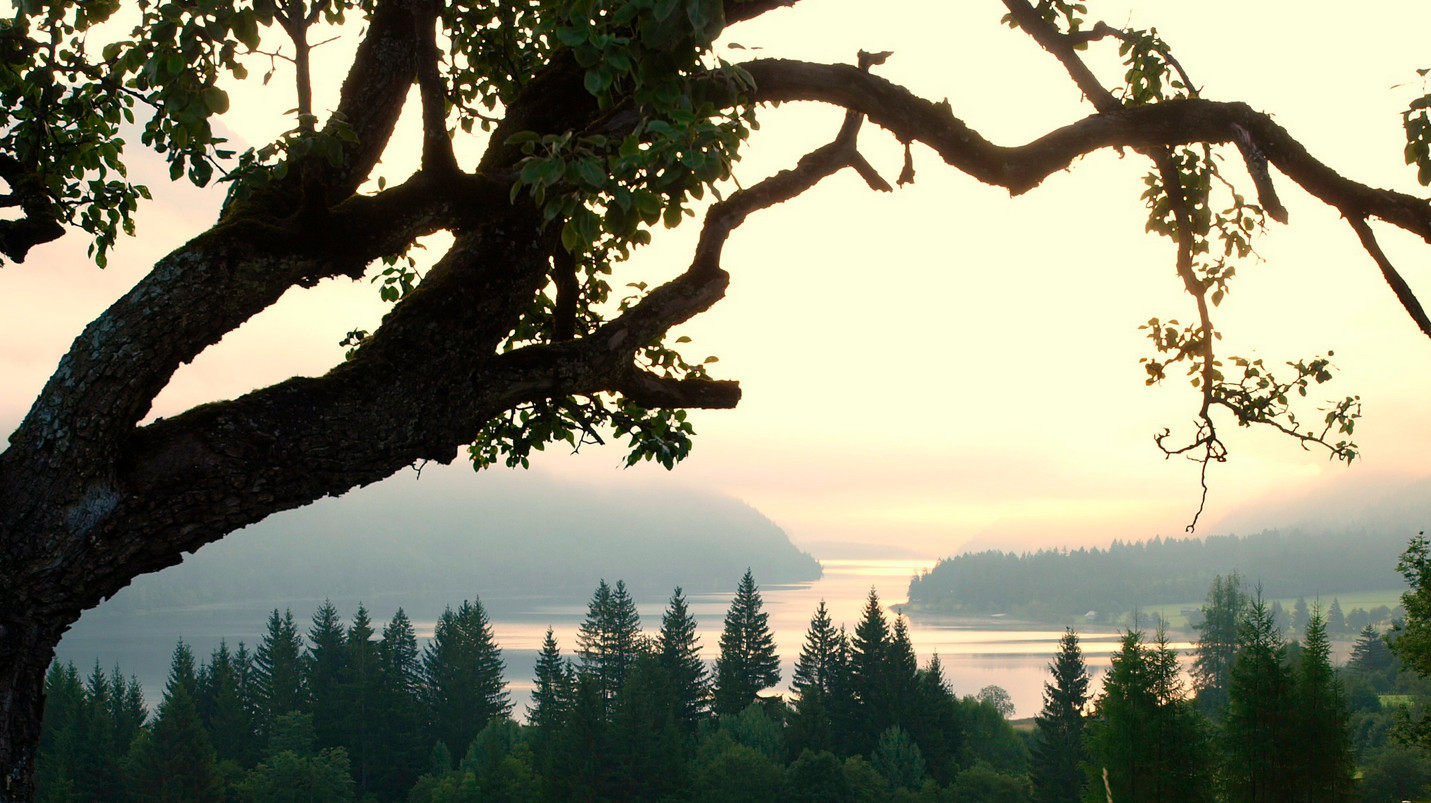 Озеро Вайсензее - австрийский уголок гармонии