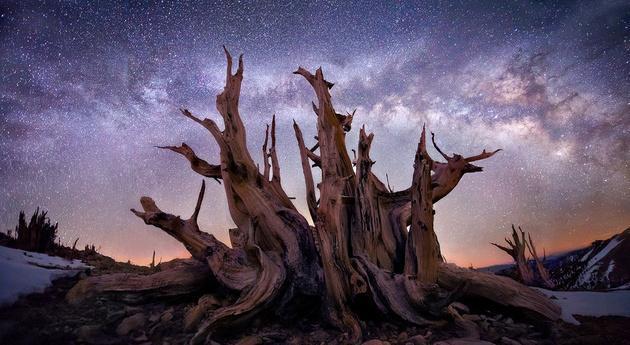Пейзажные снимки от Марка Адамуса