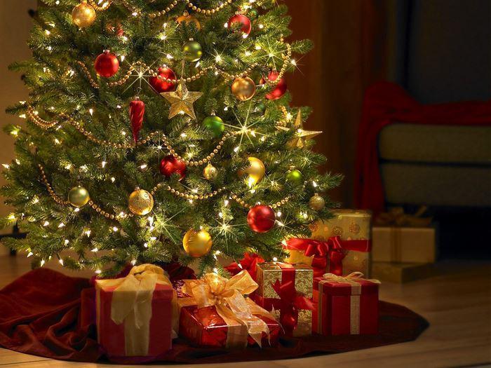 Любопытные факты о новогодней елке
