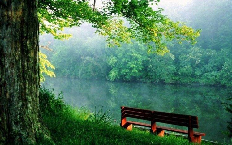 Места, где можно побыть в тишине