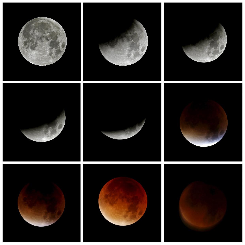 Самые популярные фотографии из Instagram от агентства Рейтер 2015 года