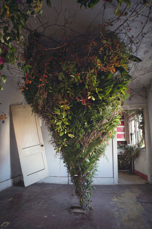 Флористы превратили заброшенный дом в храм цветов