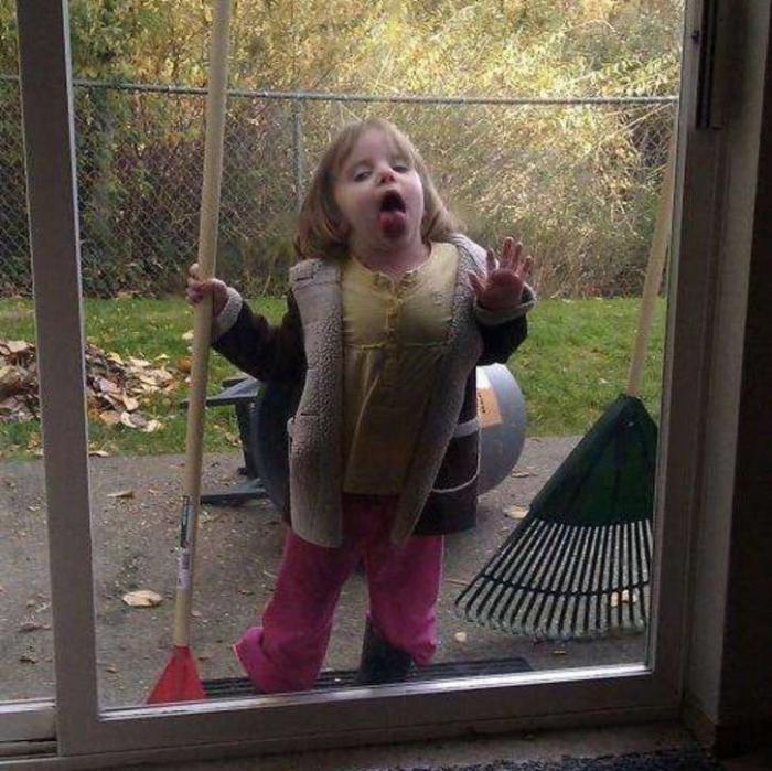 Смешные картинки девочка у стекла, картинки котиками