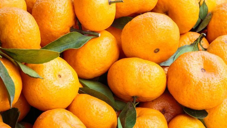 10 интересных фактов о любимчике Нового года — мандарине