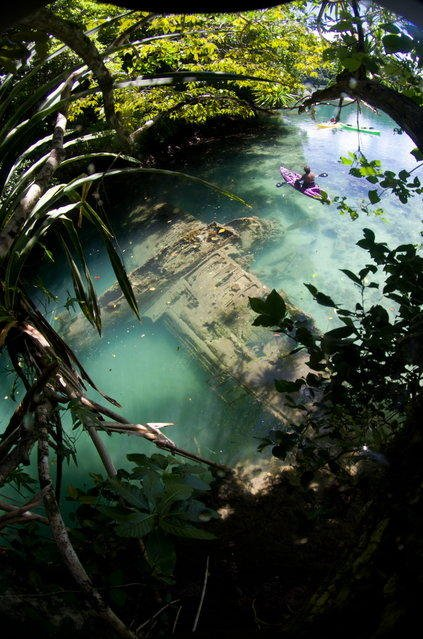 Невероятные подводные фотографии