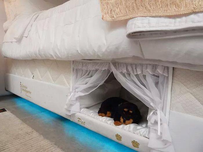 Оригинальная кровать для любителей домашних животных