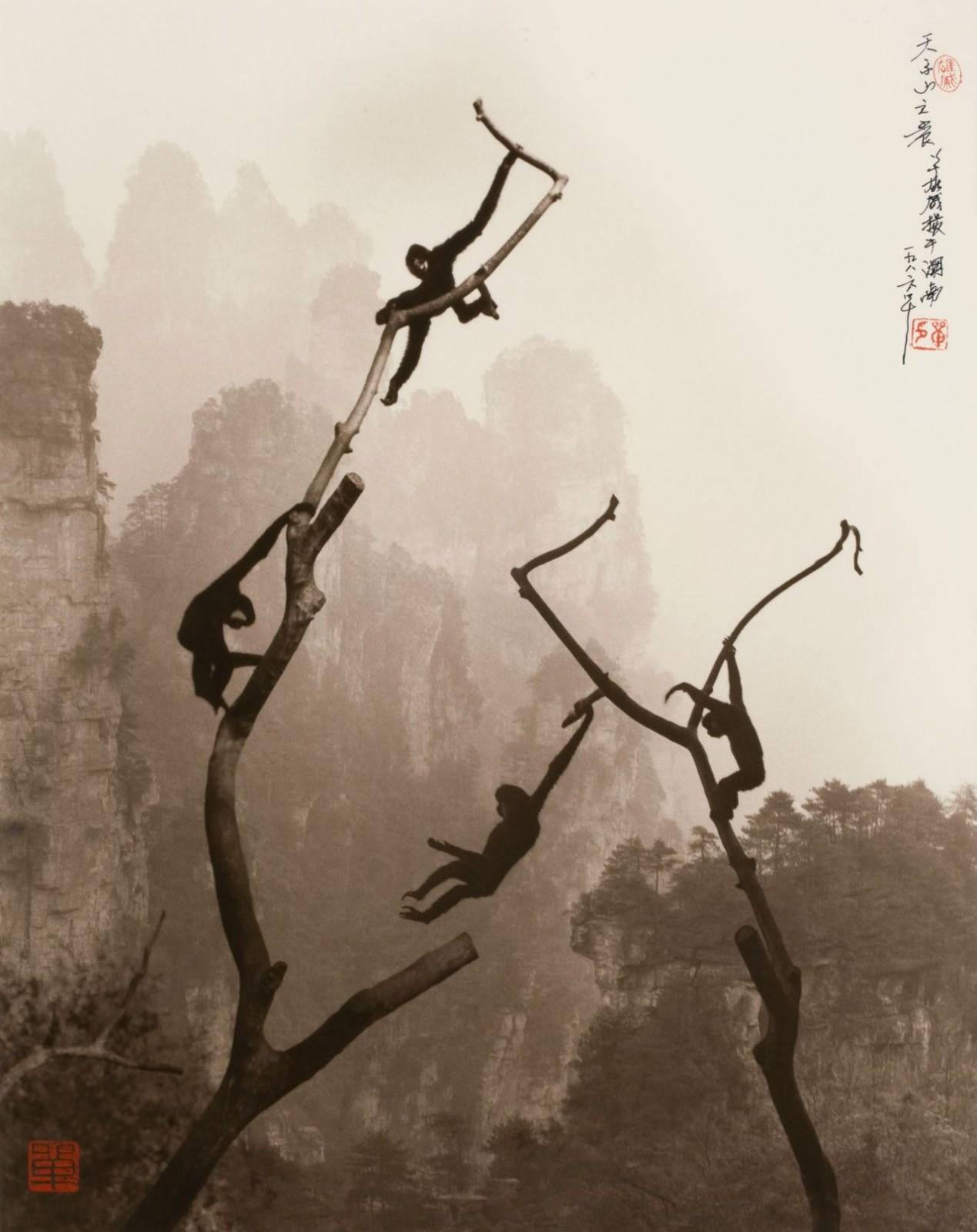 Искусство безмятежности в работах китайского фотографа Дона Хонга