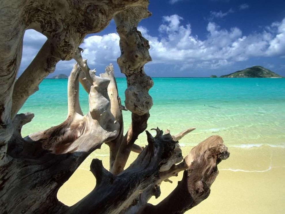 Подводные красоты Большого Барьерного рифа
