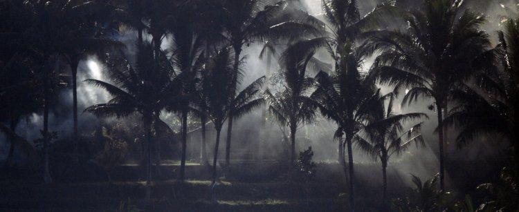 Теплые страны на фотографиях от Zissou
