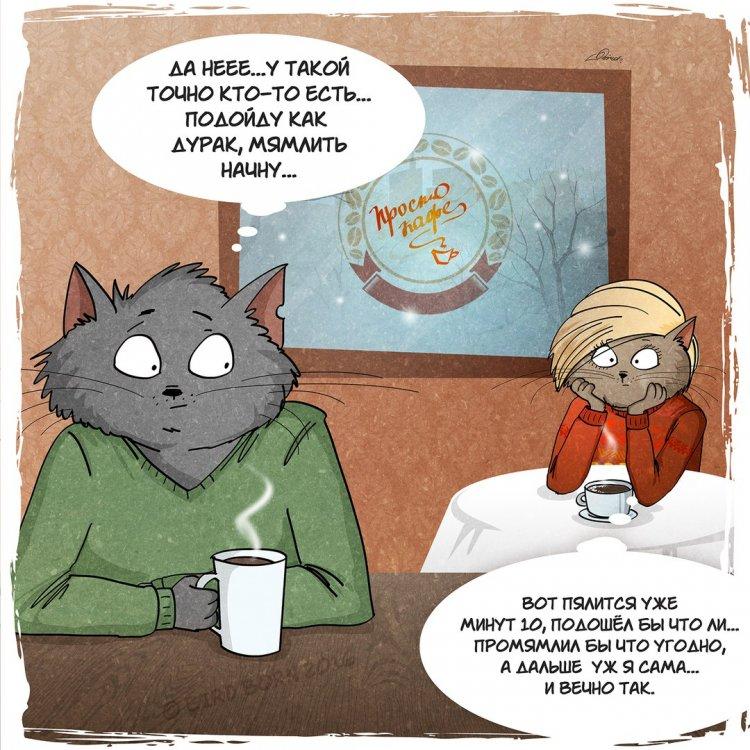Всем нам свойственно ошибаться и коты