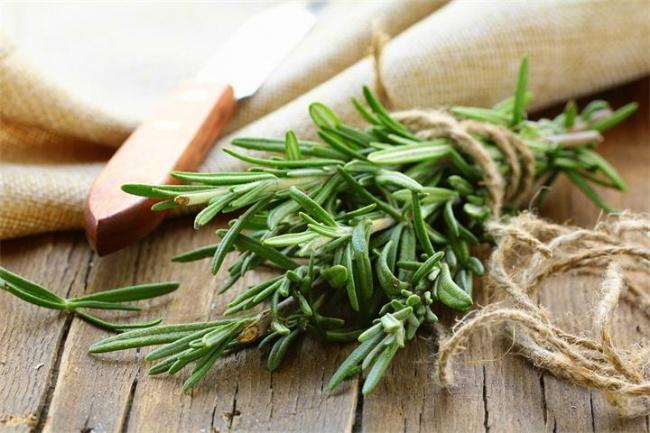 Природные ароматы, способные изменить наше настроение