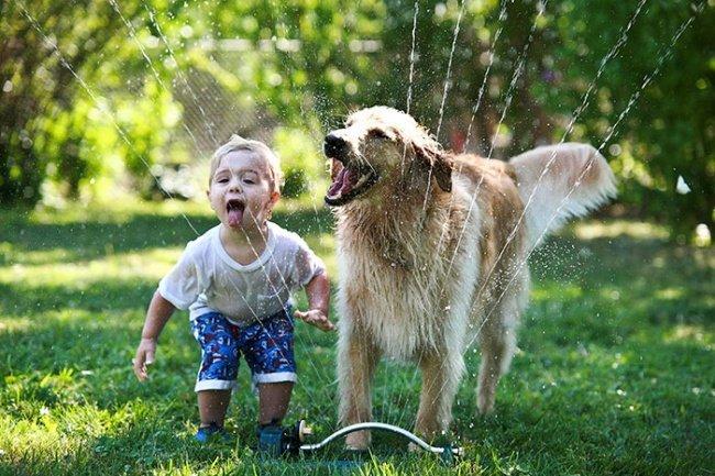 Мудрые четырехлапые существа знают, как быть счастливым