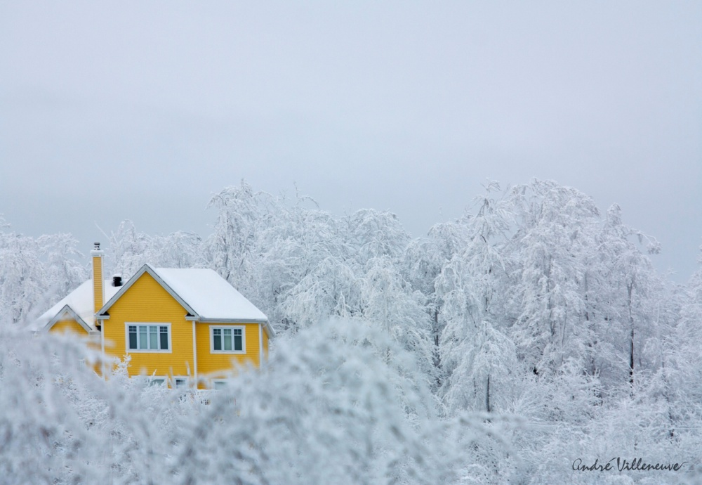 15 прекрасных и уютных домов, чтобы отдохнуть от суеты большого города