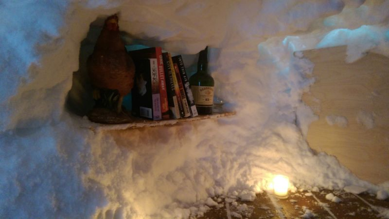 Холостяцкая берлога из снега на заднем дворе дома