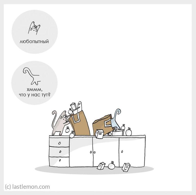 Все настроения кота в забавном комиксе
