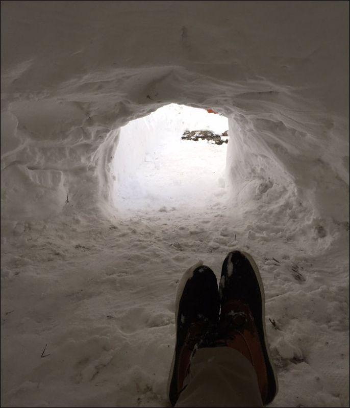 Житель Бруклина построил домик из снега и попытался сдать его в аренду
