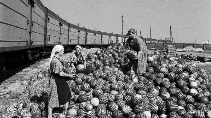 Труженики СССР из журнала Огонек