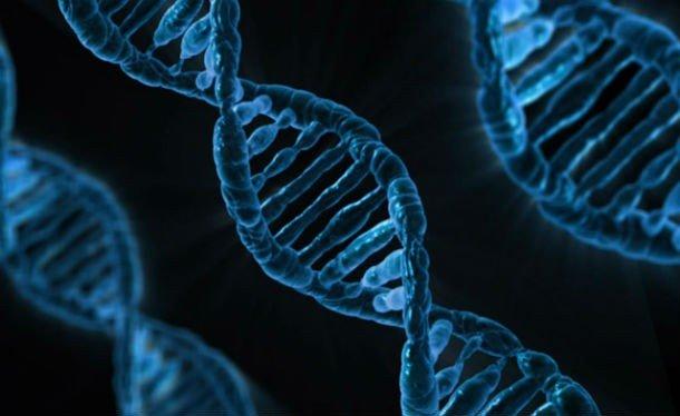 25 интересных фактов о ДНК, которые вы могли не знать
