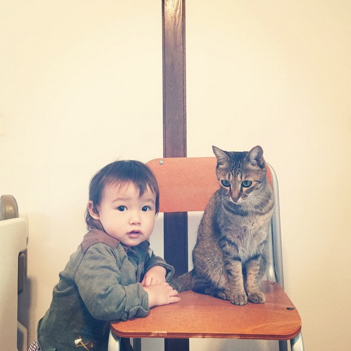 Кот может стать настоящим ангелом-хранителем малыша
