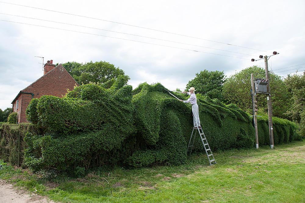 40-метровый дракон на своей лужайке