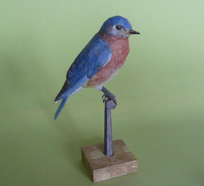 Реалистичные птицы из бумаги от Йохана Шерфта