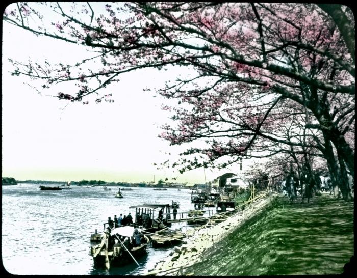 Япония позднего периода Мэйдзи, 1910 год