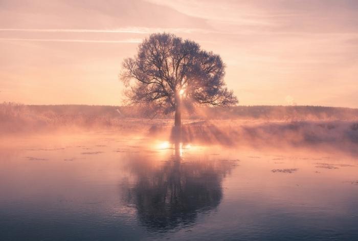 Зимняя красота природы от Алексея Угальникова