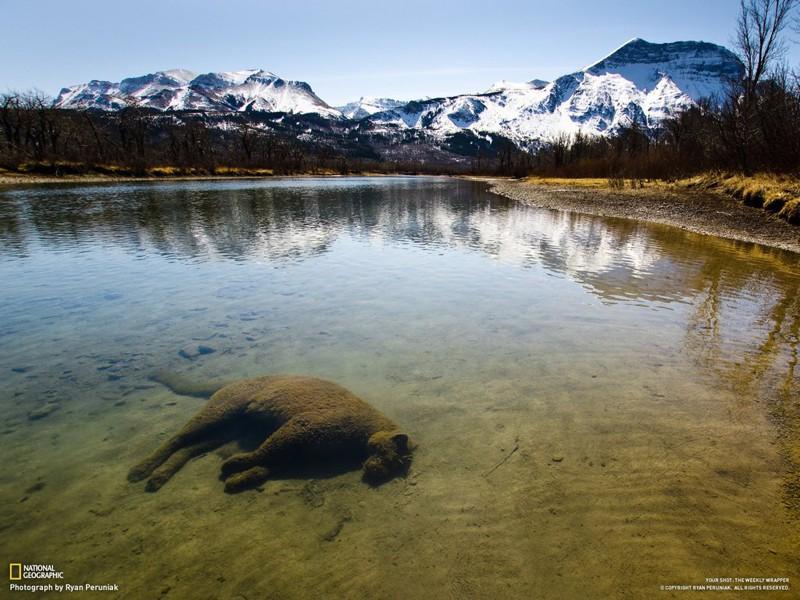 Напоминания о том, какое удивительное место наша планета
