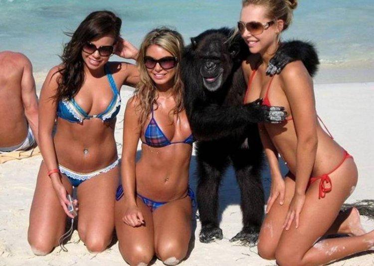 Прикольные картинки с девушками и животными