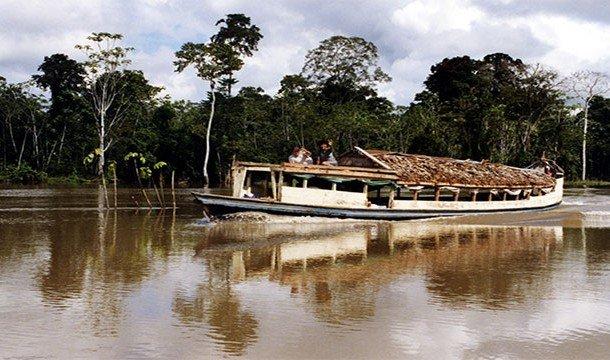 Невероятные факты про Амазонку, уникальнейшее место на Земле