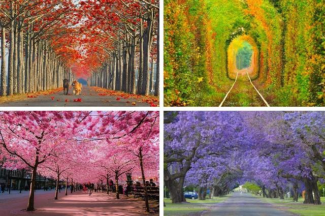 15 максимально уютных улочек мира, которые становятся еще прекраснее весной
