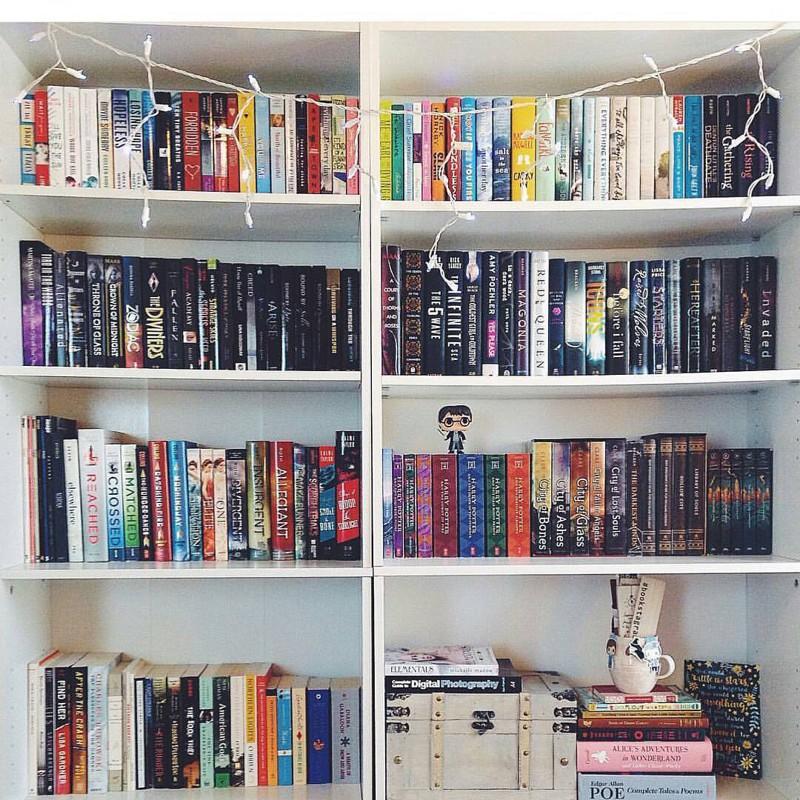 26 великолепных домашних библиотек