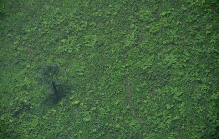 Удивительная изолированная экосистема, обнаруженная в Китае