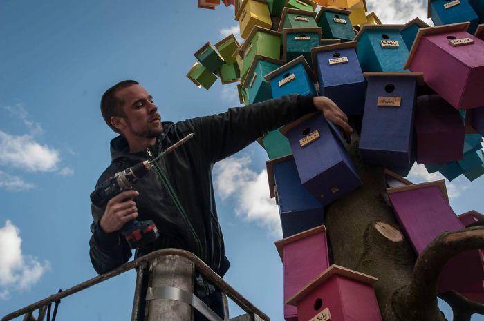 Датский художник смастерил 3500 скворечников, чтобы пернатые могли жить в городах