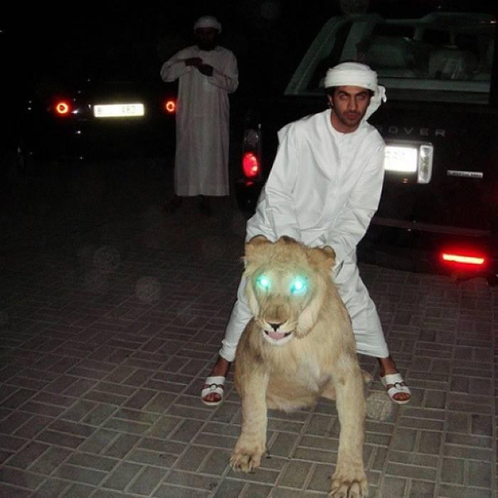 Как Богатенькие Детки Дубая тратят свои огромные состояния