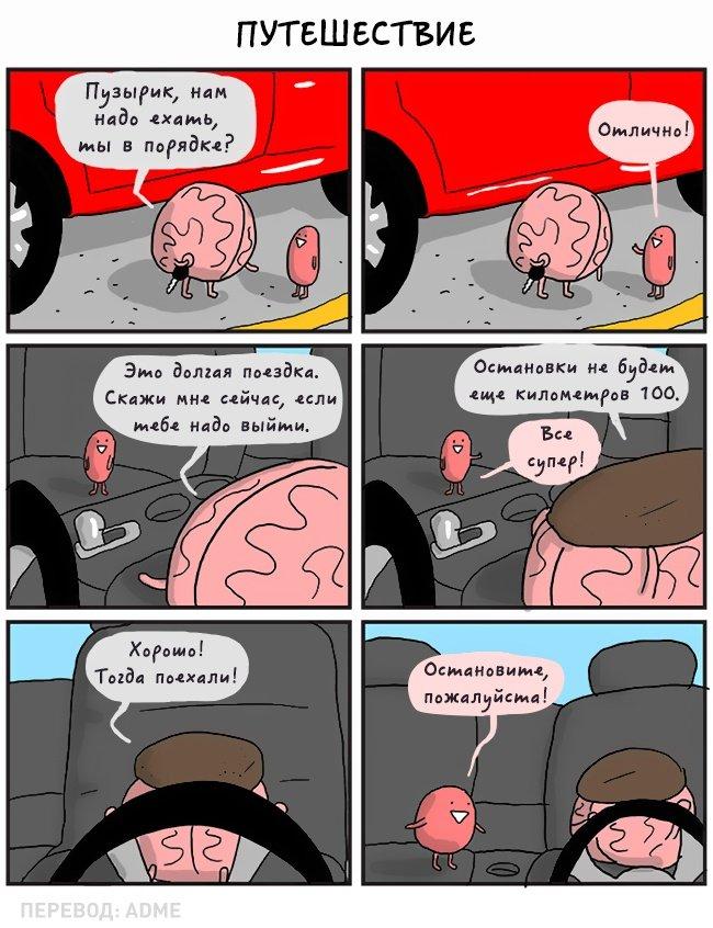 О чём разговаривали бы внутренние органы, если б умели говорить