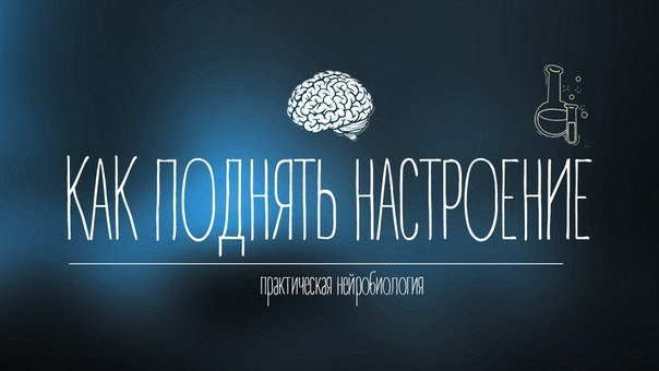 Практическая нейробиология: как поднять настроение