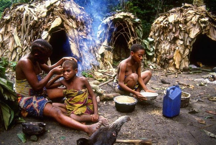 Лилипуты из Африки: как живут самые низкие люди