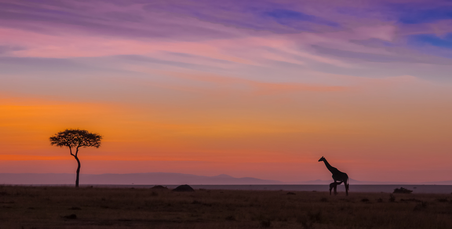 20 популярных туристических фотографий на 500px в 2016 году