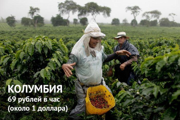 Минимальный размер оплаты труда в разных странах мира