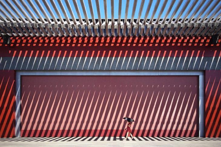 Победители Международного конкурса фотографии от журнала Smithsonian