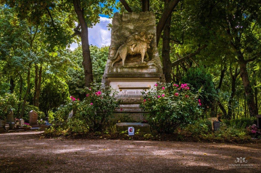 Памятники любви, дружбе и преданности из разных уголков мира